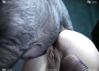 İçinde Porno Videolar / kısrak hayvan tube / En popüler Sayfa 1